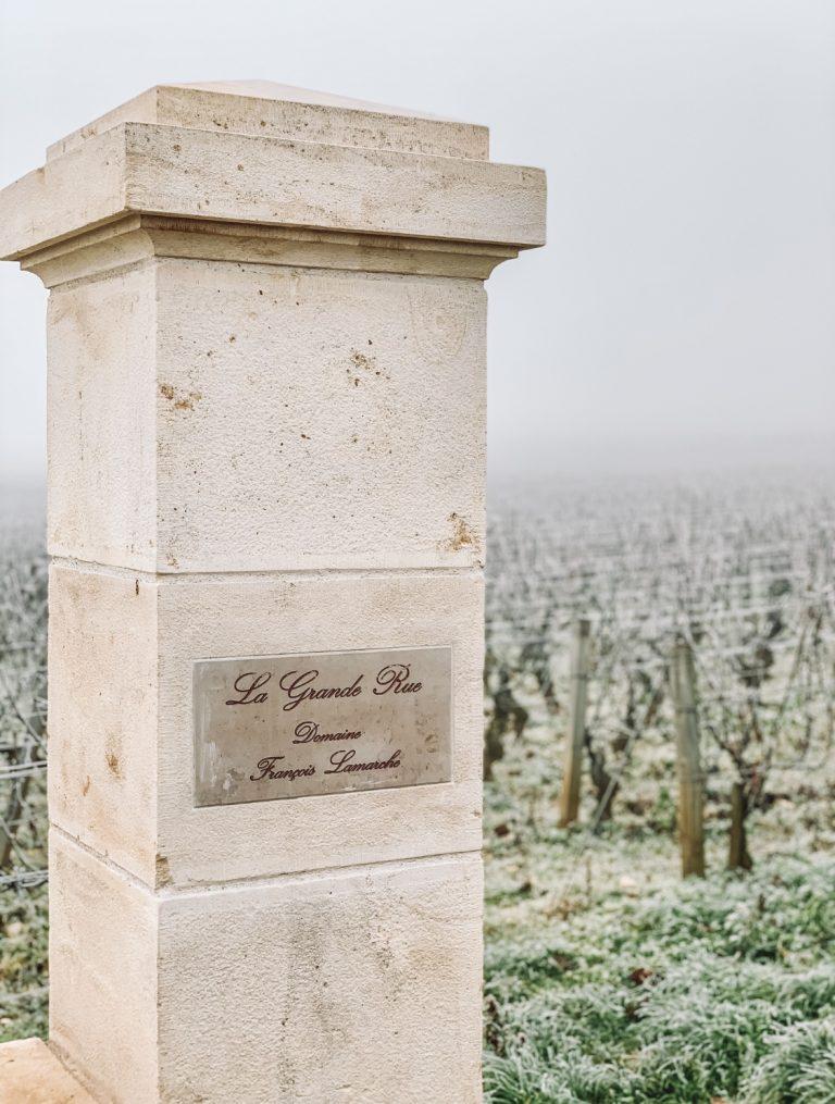 img 5439 768x1015 - Burgundy Wine Tour